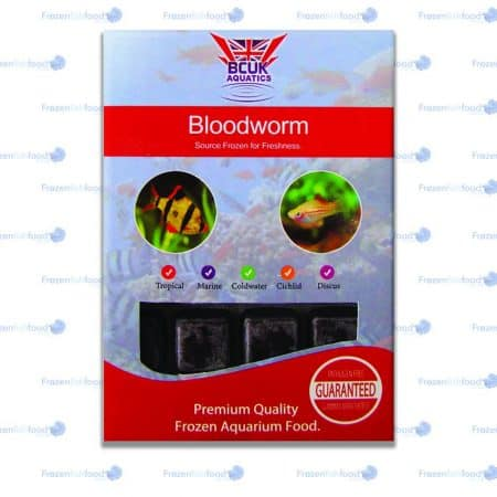 Bloodworm
