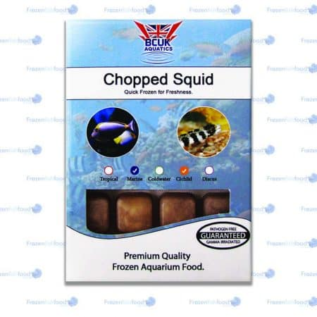 Chopped Squid