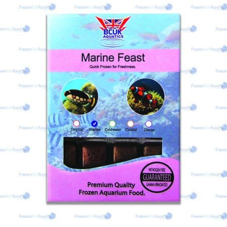 Marine Feast