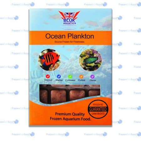 Ocean Plankton