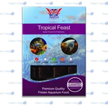 Tropical Feast