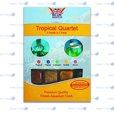 Tropical Quartet